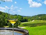 白ワイン造り方