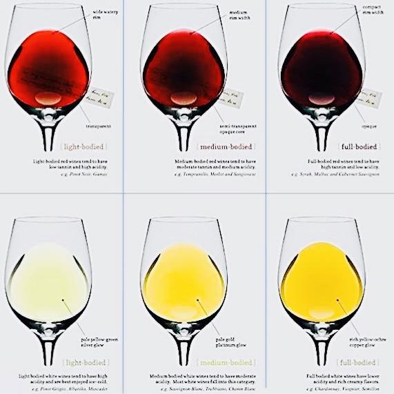 ワインの色調